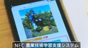 2017_開発賞_NECソリューションイノベーター_農業技術学習支援システム1